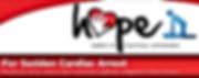 Hope Logo_edited_edited.png