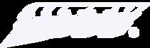 Litty Logo - White.png