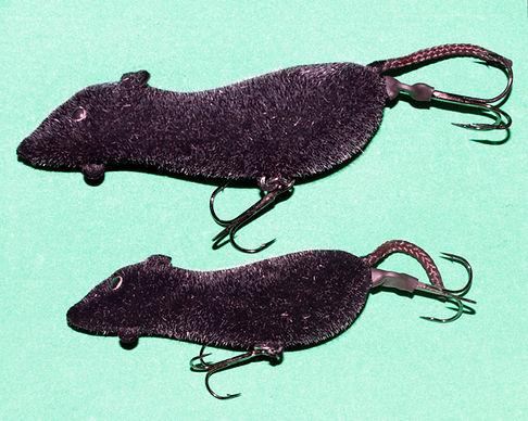 Мышь мышара на тайменя