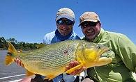 Рыбалка в Аргентине золотой дорадо