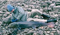 Рыбалка на Плато Путорана