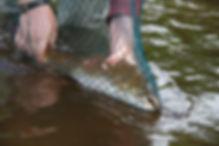 Бахта рыбалка