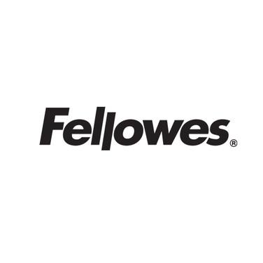 IDC2019_Fellows.jpg