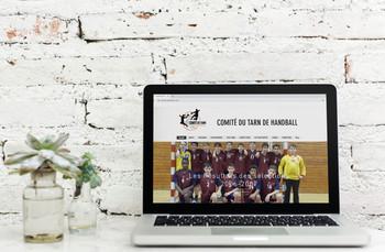 Site_internet_du_Comité.jpg