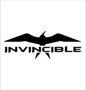 invincible_boats_1024x1024.jpg