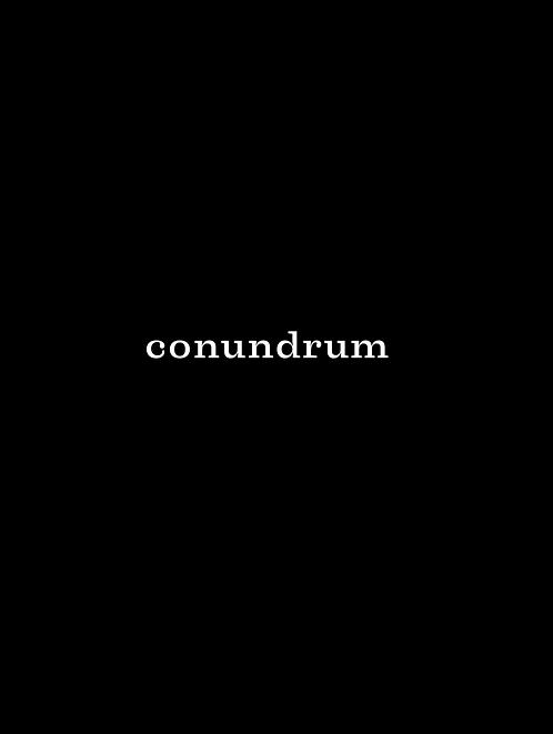 Conundrum - Jane Paris