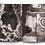 Thumbnail: Nervuras Noturno - Alice Grou