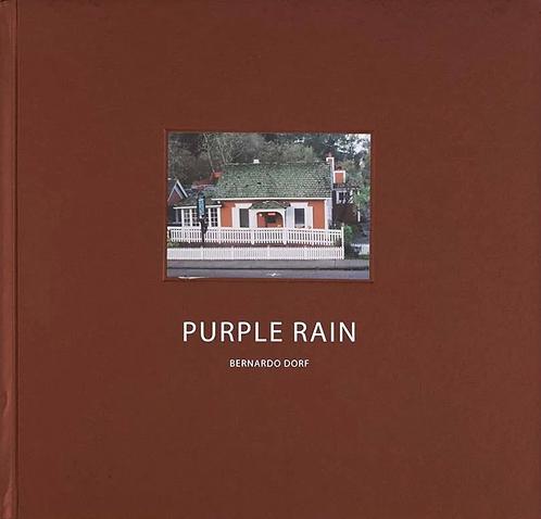Purple rain - Bernardo Dorf