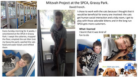 David French - Mitzvah Project