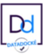Picto_datadocke couleur.jpg