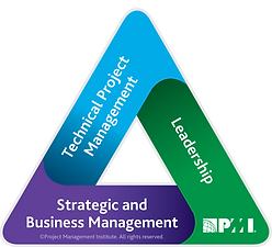 PMI_Talent_Triangle_3D.png