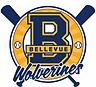 Wolverine Baseball_3.png