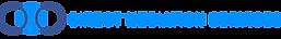 dms-logotype2.png