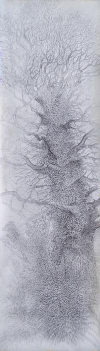 Chêne de haie et chardon. 2015. 360 x 110 cm. Stylo roller sur papier Canson