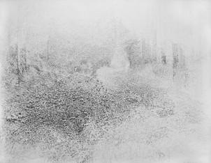 Pins Laricio enroncés. 2016. 140 x 200 cm. Stylo roller sur papier Fabriano