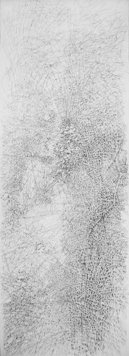 Eau de ruissellement, étude panoramique. 2016. 200 x 70 cm. Stylo roller sur papier Fabriano