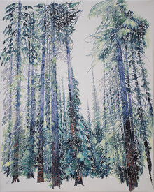 Futaie d'épicéas. 2017. 81 x 65 cm. Aquarelle sur papier monté sur châssis.jpg