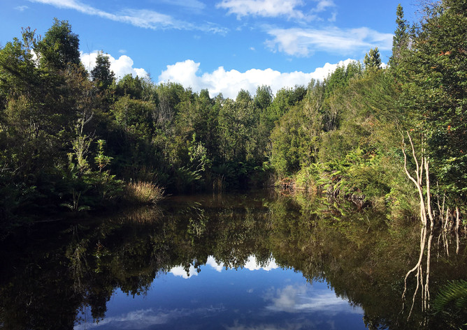 Parque Katalapi: Conservación para la Vida