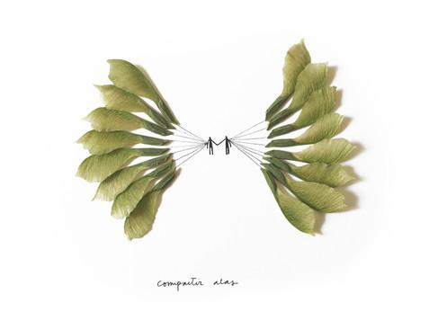 compartir alas