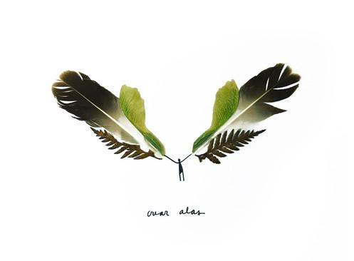 crear alas