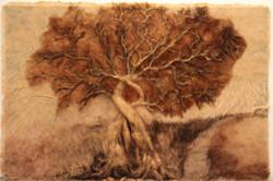 """Tree of life """