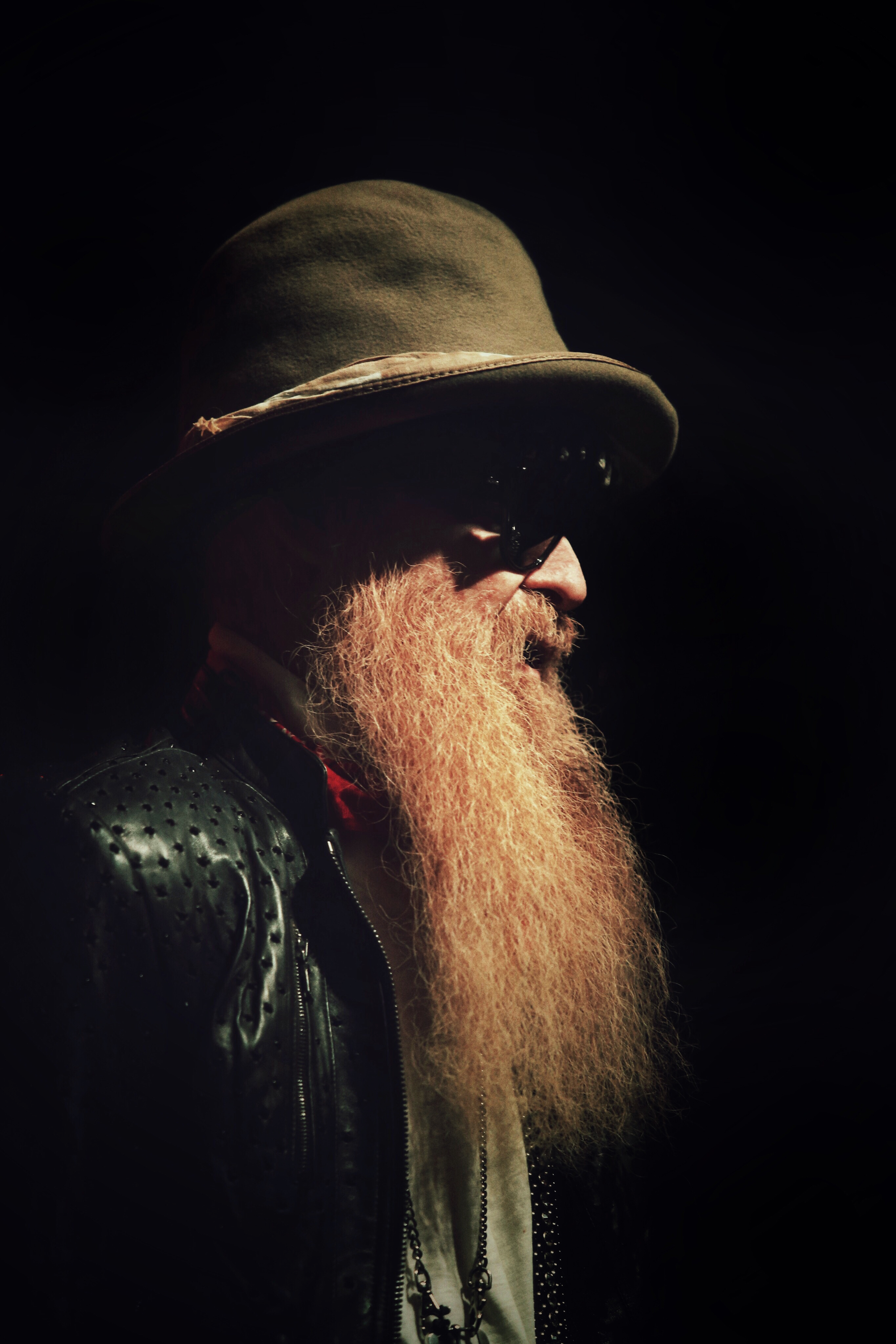 billy f gibbons (zz top)