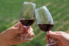 Beaujolais-vin