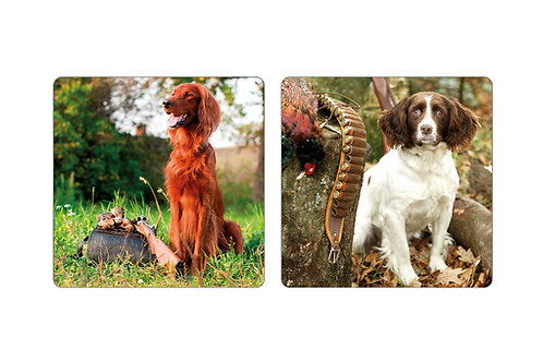 Coasters Set of 8 Mans Best Friend Pack by Gun and Game