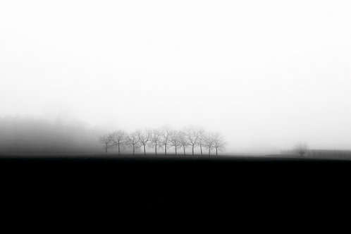 Autumn Landscape Collection -2- by Thierry Lathoud