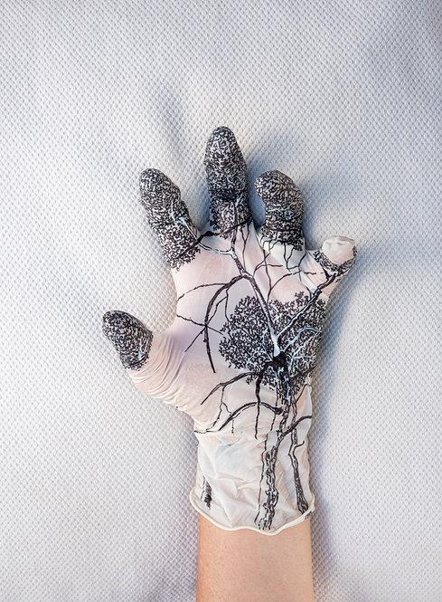 Skin Metamorphosis by Tatiana Blanque