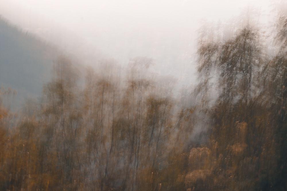 Autumn by Renato Votto (c)