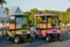 The Hibiscus and The Palms, uniquely styled electric golf carts by Southern Breeze Cart Rental