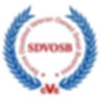 SDVOSBcve_completed_s.jpg