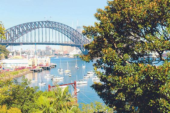 artist, peter kingston, lavender bay, luna park, sydney harbour, sydney harbour bridge