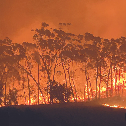 Bilpin, bushfires, NSW, firefighter