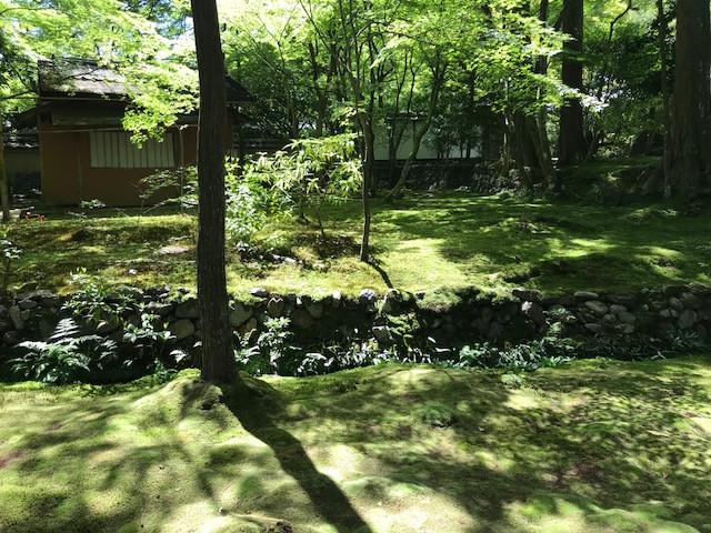 京都 西芳寺3