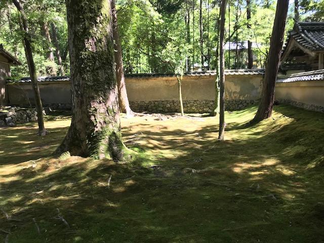 京都 西芳寺8