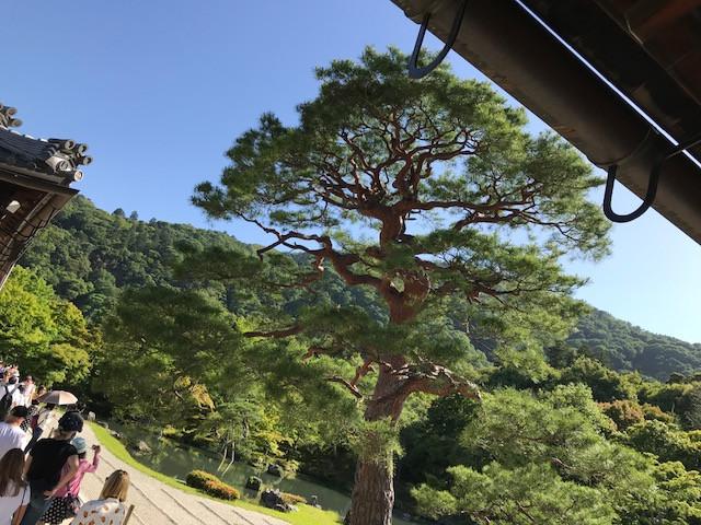 京都 天龍寺1
