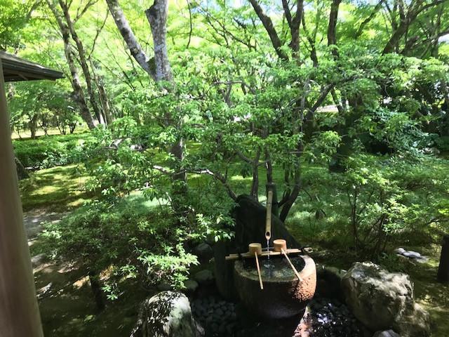 京都 西芳寺2