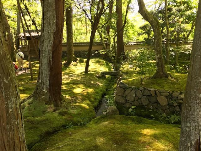 京都 西芳寺5