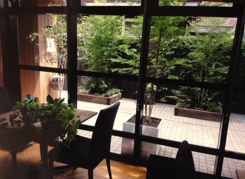 店内から眺める緑豊かな風景