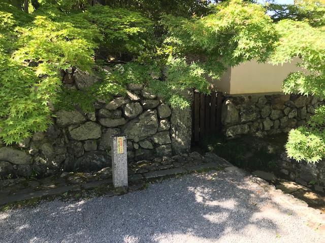 京都 西芳寺9