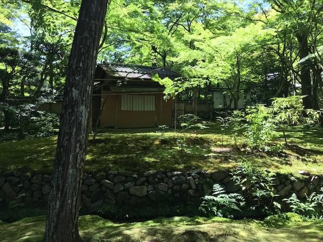 京都 西芳寺4