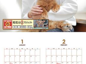 カレンダー製作。