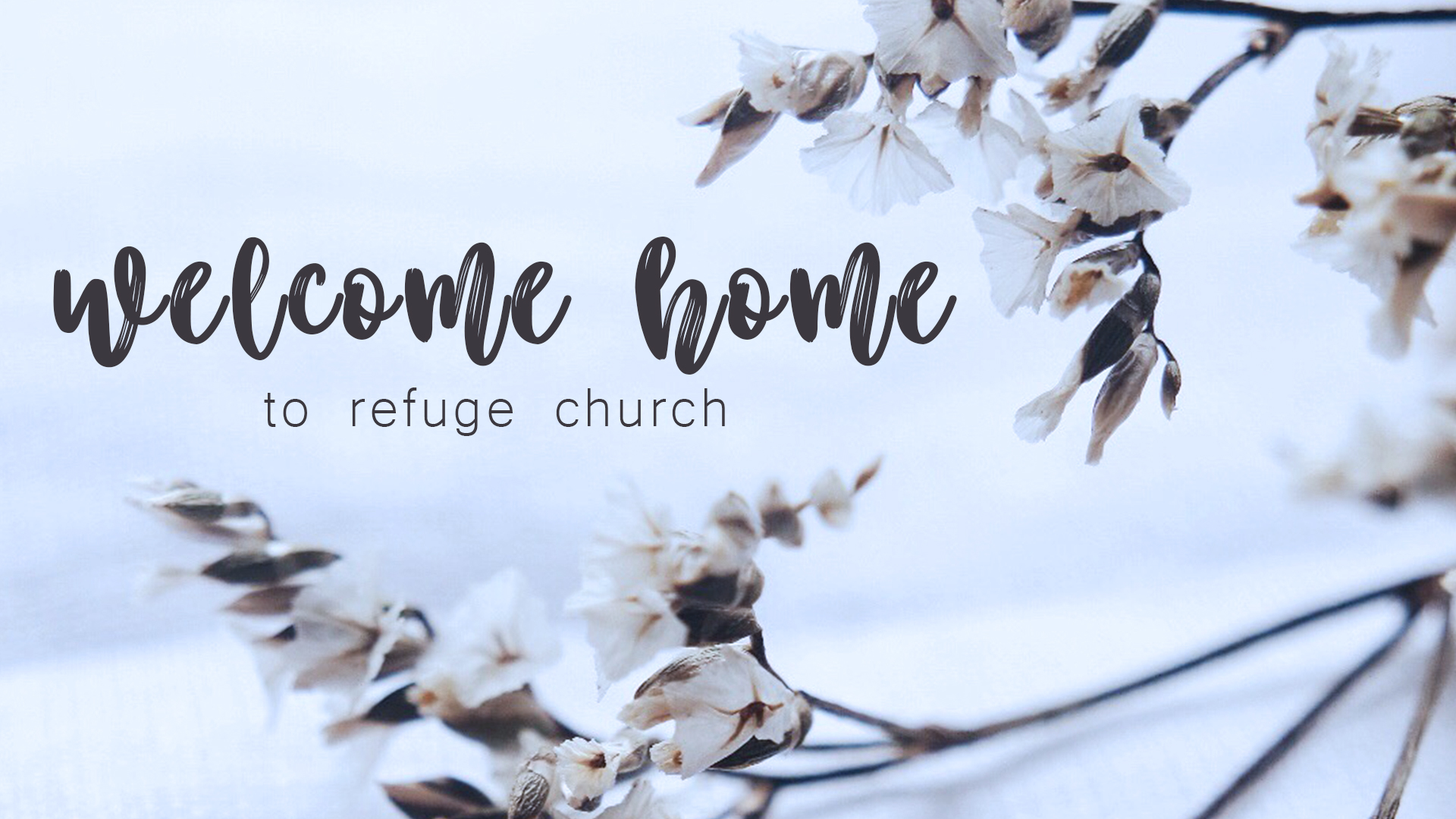 refuge-welcome-home-v2-1920x1080