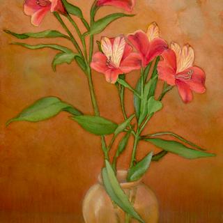 Flowering Alestromeria