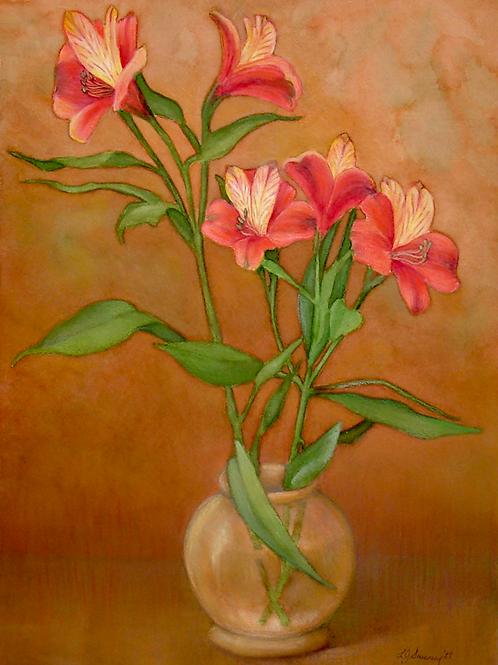 Flowering Alestroemeria