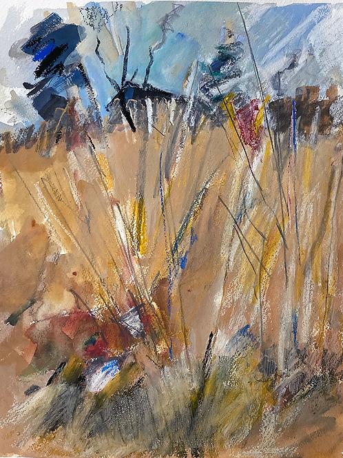 Meadow, Bartram's Garden