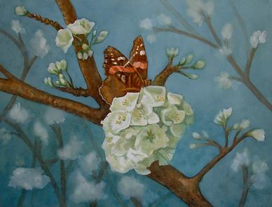 Sweeney_L_Butterfly Feastingon a Floweri