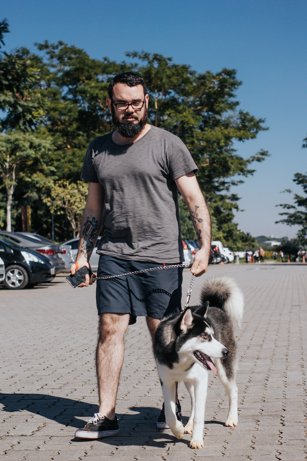 Why you should walk your dog